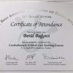 Cardioothoracic Critical Care Nursing Course